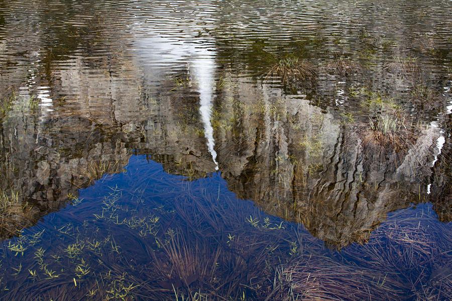 Reflection of Yosemite Falls by Rick Pisio