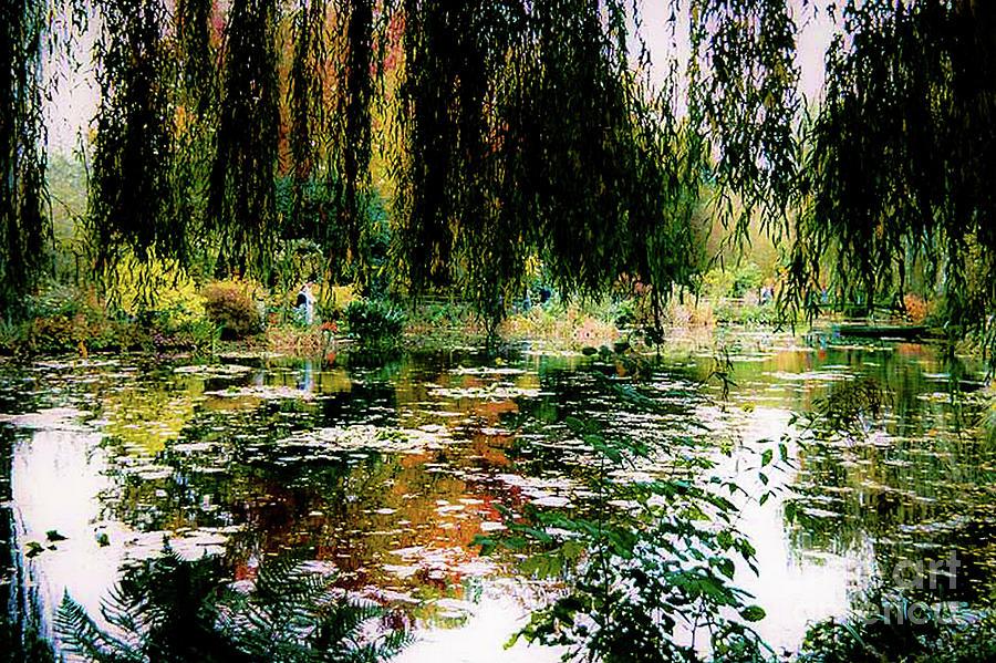 Monet Photograph - Reflection On Oscar - Claude Monets Garden Pond by D Davila