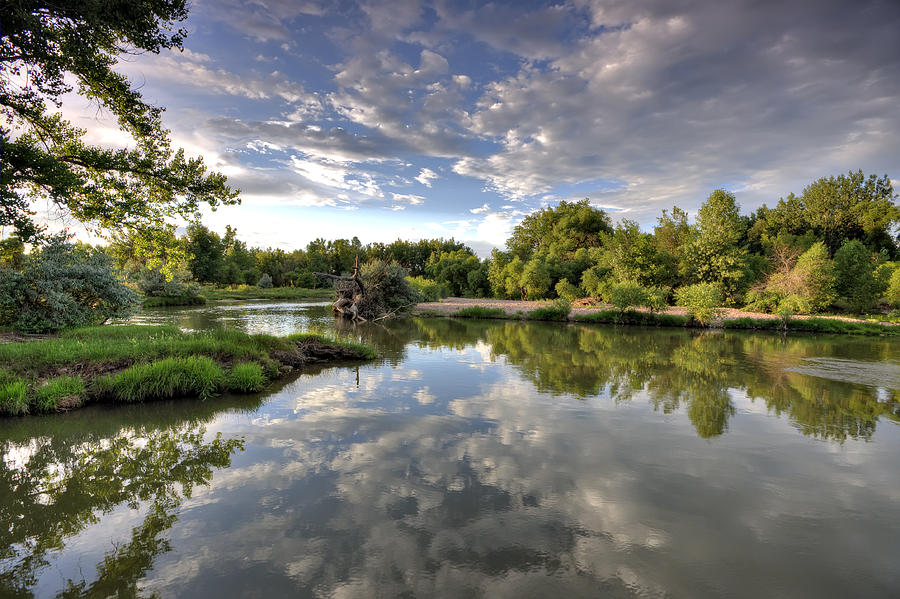 River Photograph - Reflection On The Poudre River by Shane Linke
