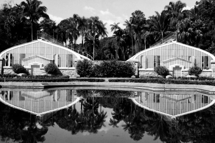 Botanic Photograph - Reflections by Amarildo Correa