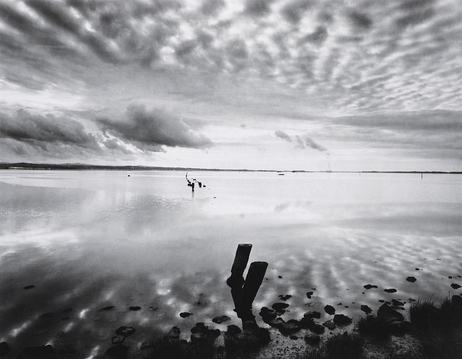 Reflections Humboldt Bay Photograph by Michael Harris