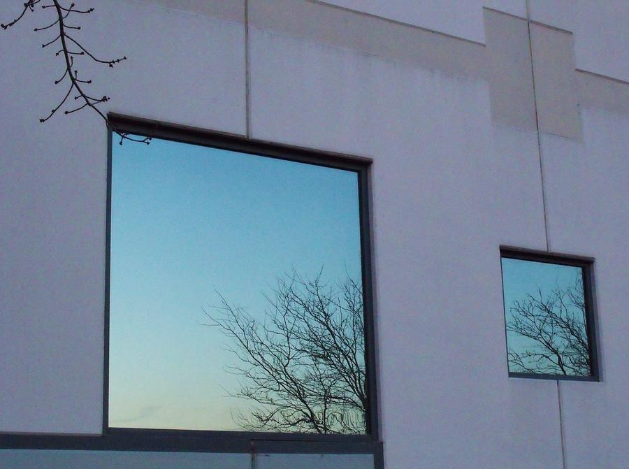 Windows Photograph - Reflections I by Anna Villarreal Garbis