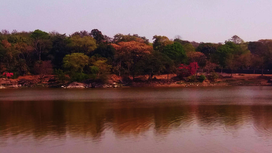 Reflections Photograph - Reflections In A Lake by Nilu Mishra