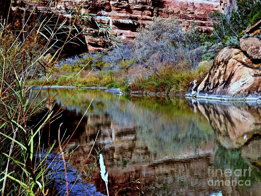 Reflections In Desert River Canyon Digital Art by Annie Gibbons