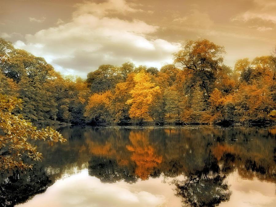 Seasonal Photograph - Reflections by Jessica Jenney