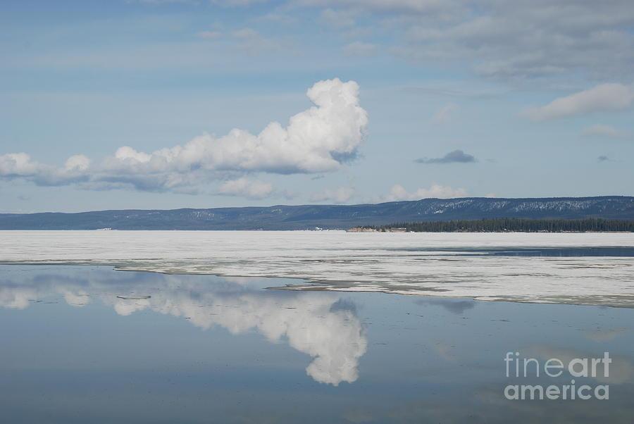 Reflections by Jim Goodman