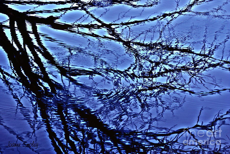 Reflections Photograph - Reflections by Joanne Smoley