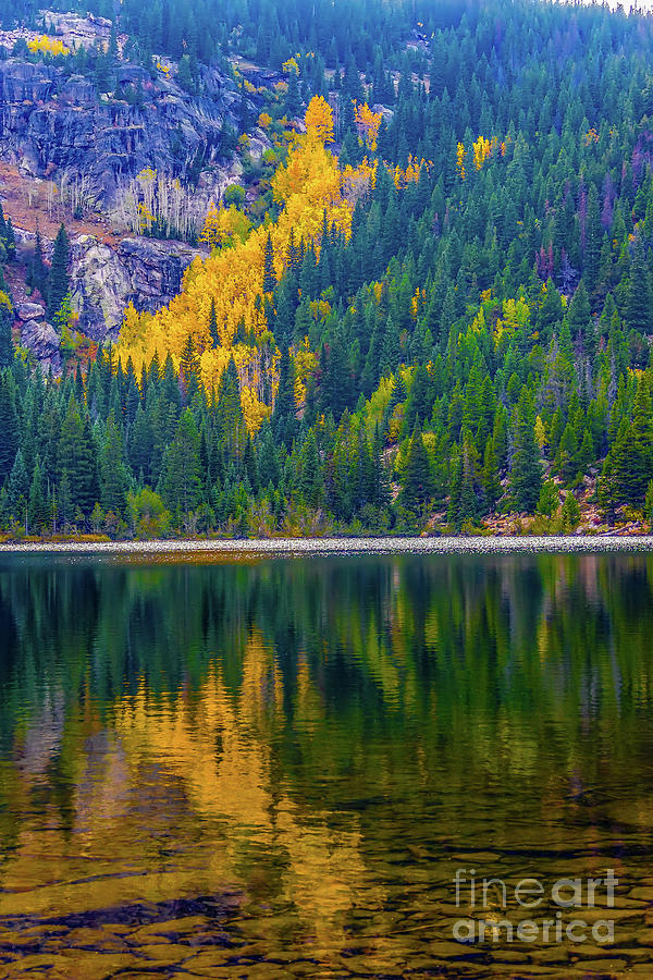 Reflections Photograph - Reflections by Jon Burch Photography