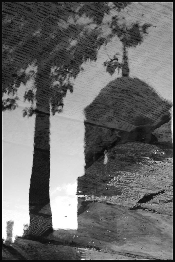 Black And White Photograph - Reflections by Julia Bridget Hayes