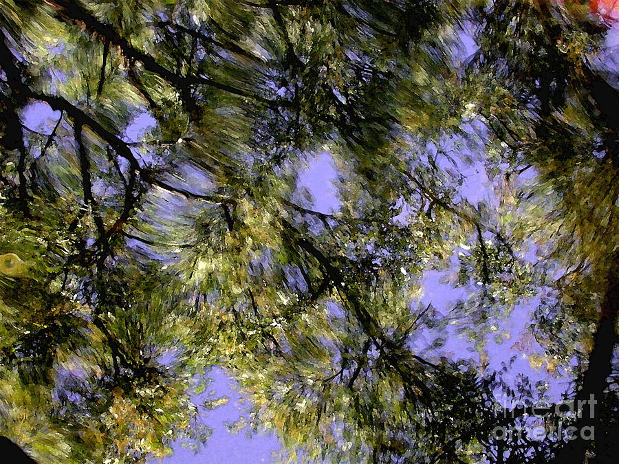 Reflections Photograph - Reflections by Marc Bittan