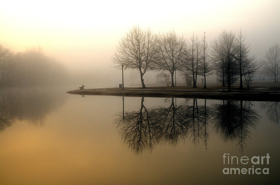 Reflections by Miguel Celis