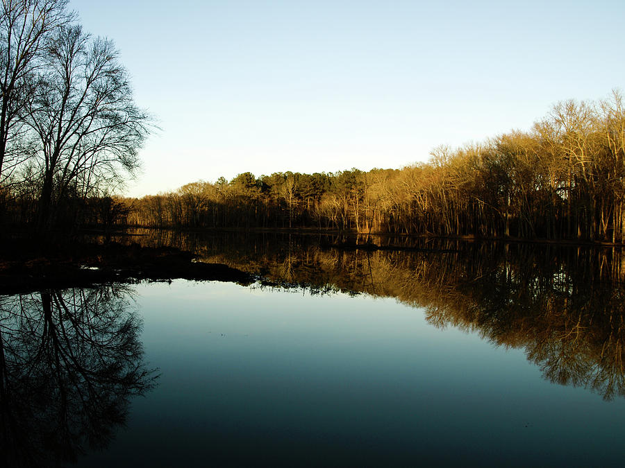 Reflection Photograph - Reflections by Valeria Donaldson