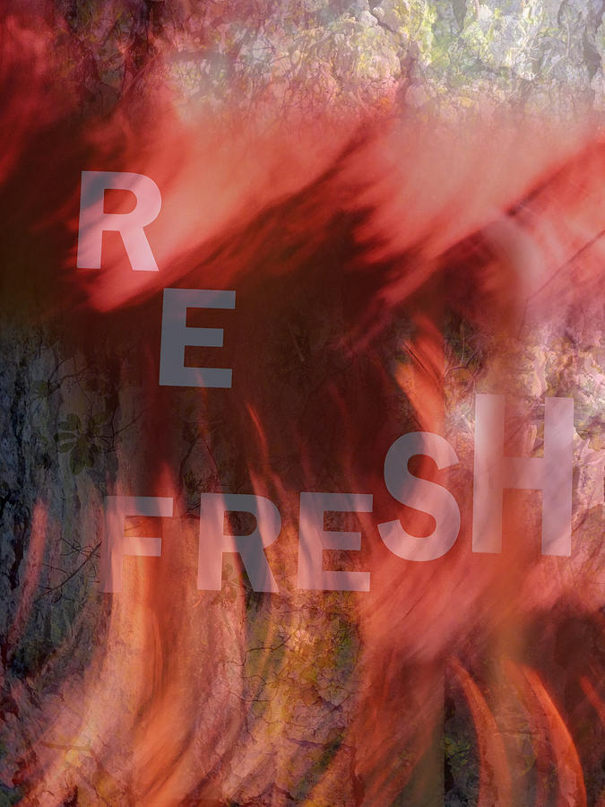 Abstract Photograph - Refresh by Lyn  Perry