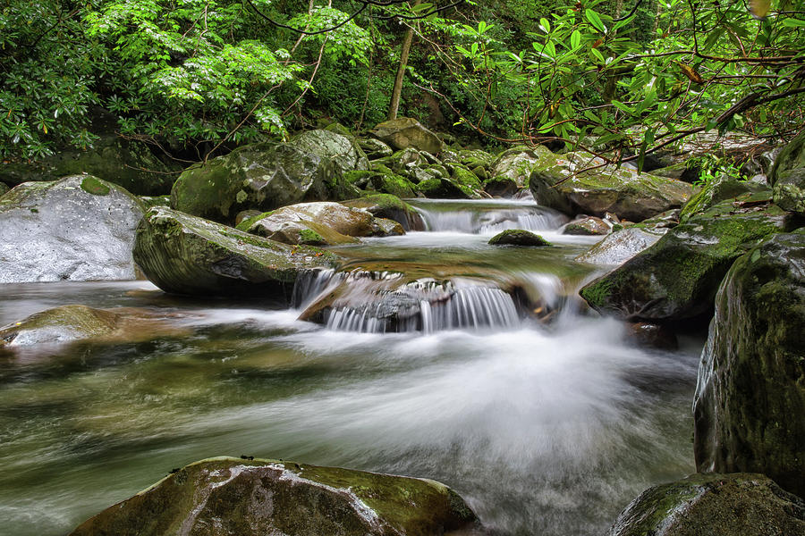 Great Smoky Mountains Photograph - Refuge by Kristina Plaas