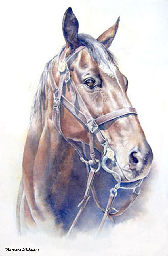 Horse Painting - Regal  A Cavalry Horse Portrait by Barbara Widmann
