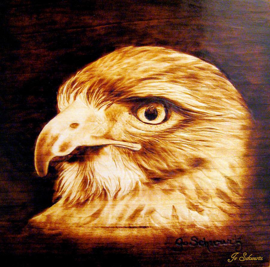 Hawk Pyrography - Regal by Jo Schwartz
