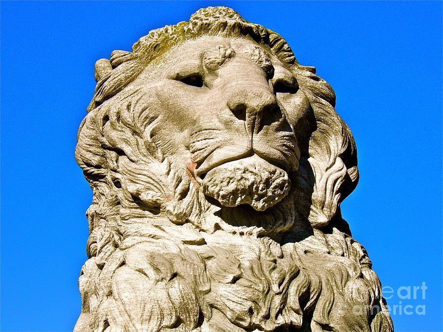 Lion Photograph - Regal Lion by E Robert Dee