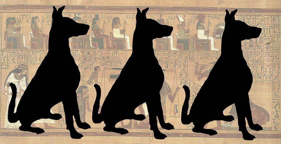 Dog Photograph - Regal Sit, Ancient Egyptian Background by Karla Beatty