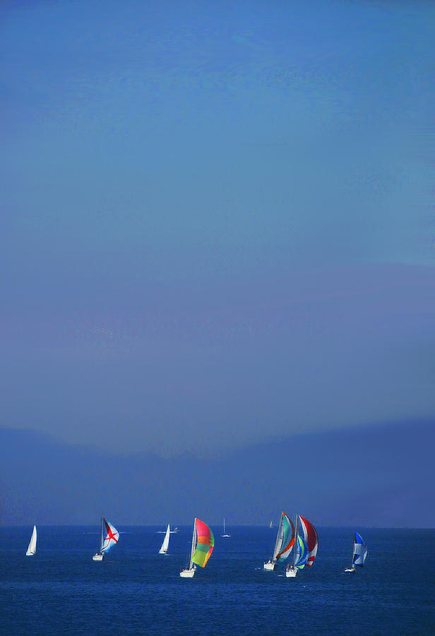 Regatta by Val Jolley