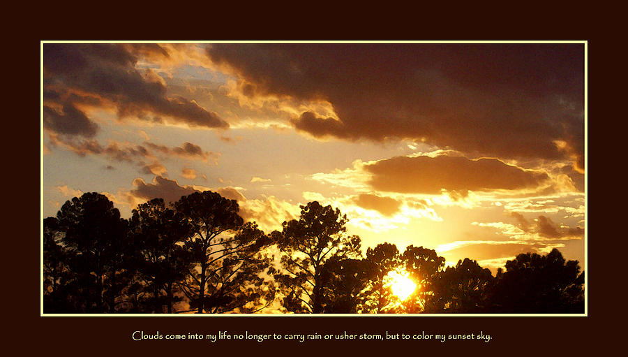 Rejoice Photograph - Rejoice by Ginger Howland