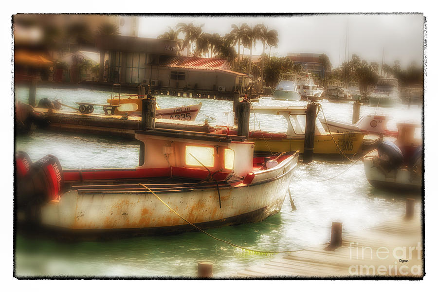 Aruba Photograph - Aruban Quay  by Steven Digman