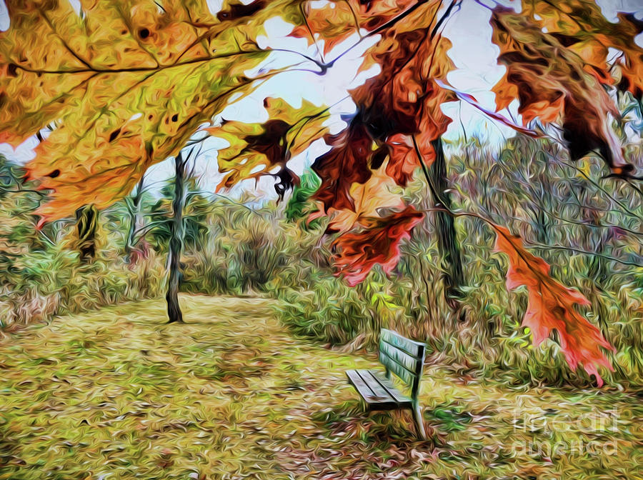 Autumn Photograph - Relax And Watch The Leaves Turn by Kerri Farley