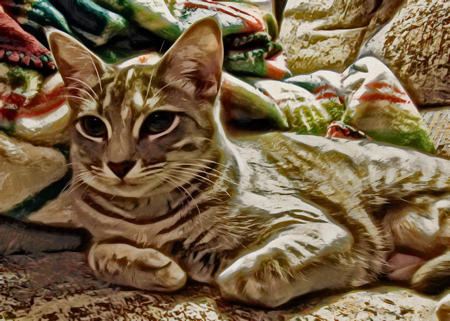 Cat Digital Art - Relaxing Miyu by David G Paul