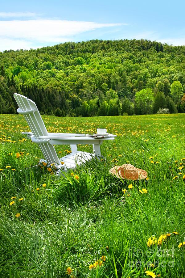 Adirondack Digital Art - Relaxing On A Summer Chair In A Field Of Tall Grass  by Sandra Cunningham