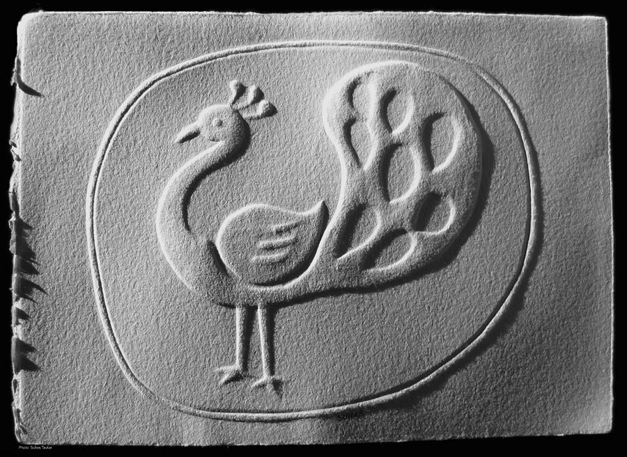 Nakhachitra Relief - Relief Peacock by Suhas Tavkar