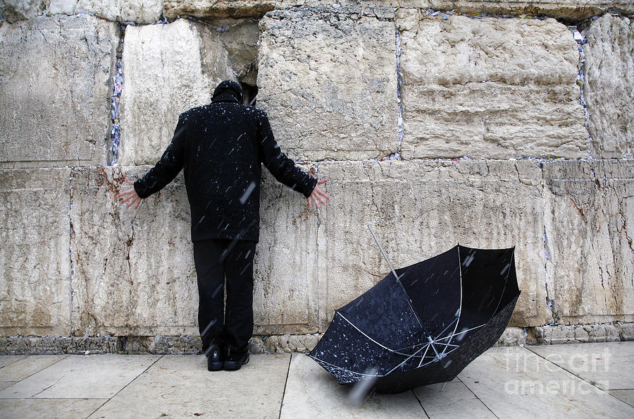 Jerusalem Photograph - Religious Jew Praying At The Western Wall In Jerusalem  by Jason Moore