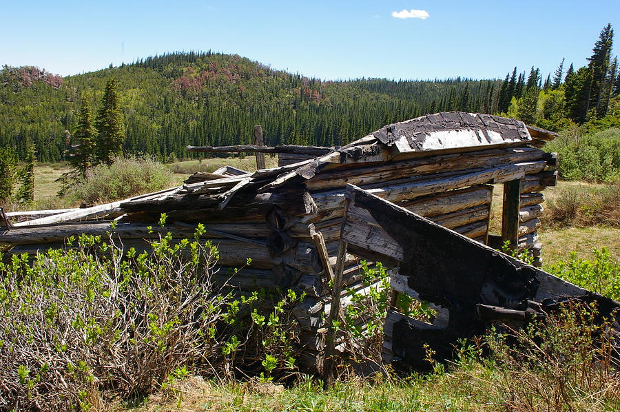 Ghost Towns Photograph - Remnants Of Caribou by Cynthia Cox Cottam