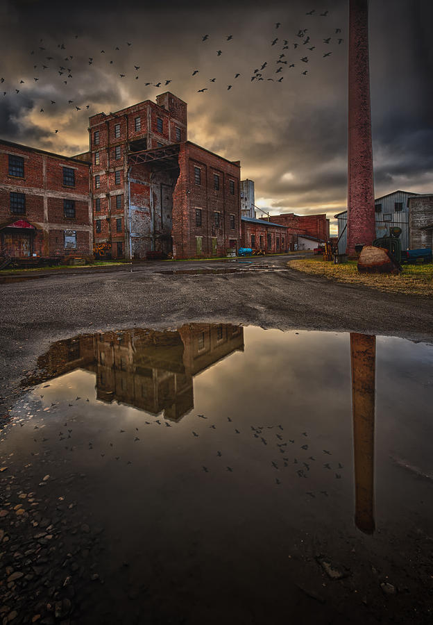 Abandoned Photograph - Remnants Of The Old Starch Factory by Jakub Sisak