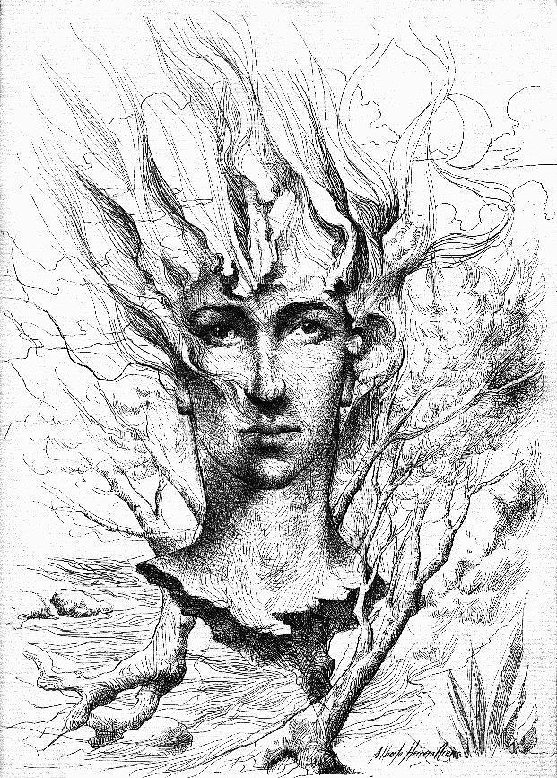 Renacer  Drawing by Alberto Herrera Arana