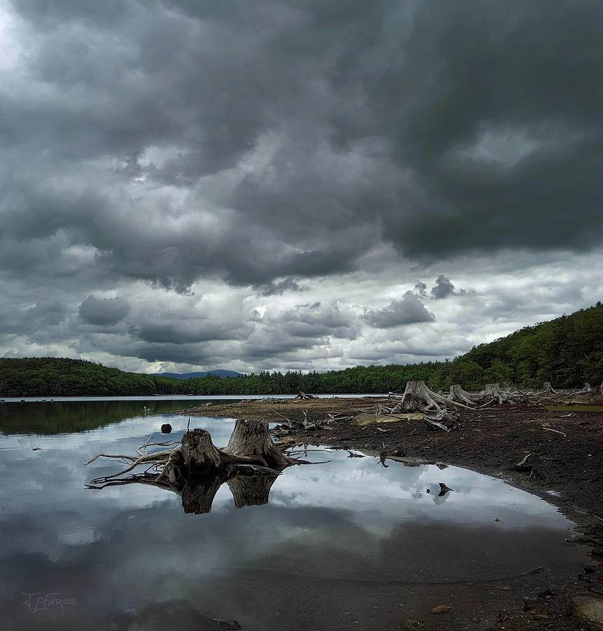 Reservoir Photograph - Reservoir Logs by Jerry LoFaro
