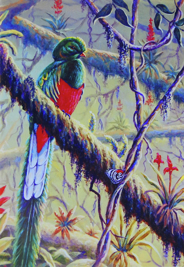 Resplendent Quetzal by Ed Breeding
