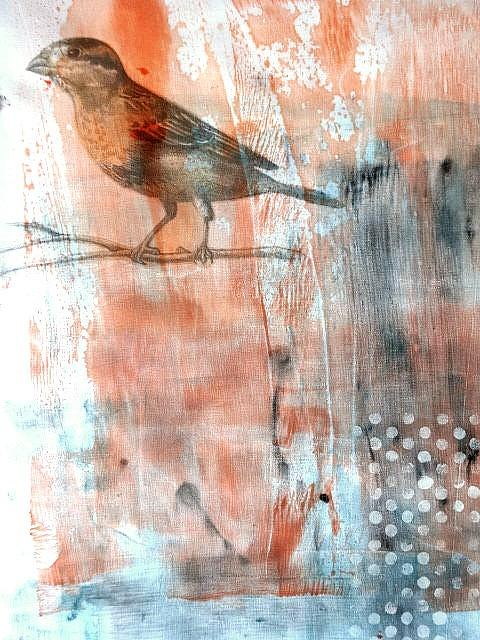 Bird Mixed Media - Restful Moment by Rose Legge