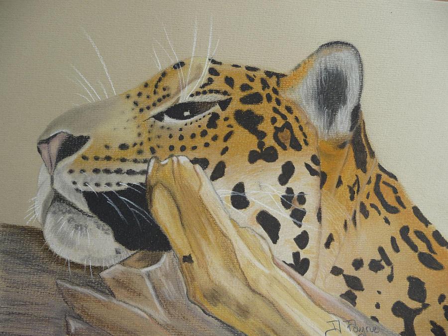 Leopard Painting - Resting Leopard by Debbie Payne