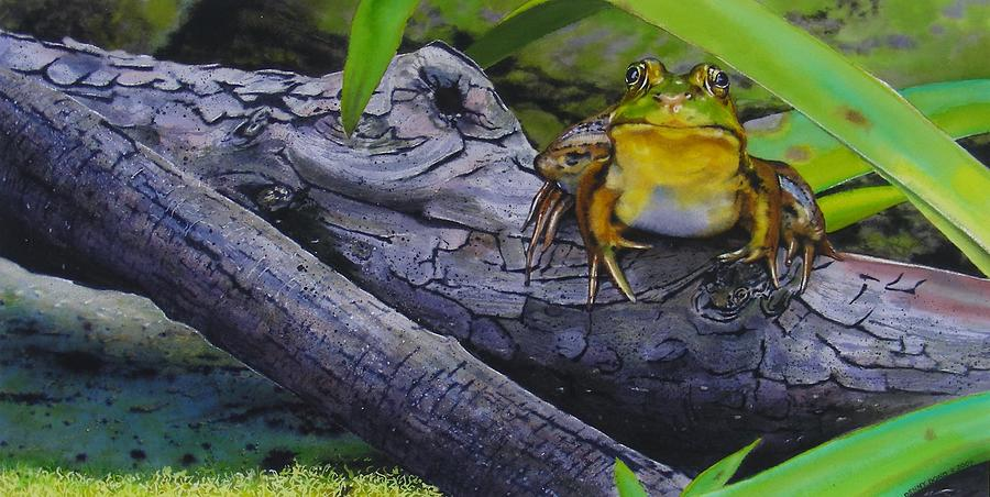 Frog Painting - Restingplace by Denny Bond