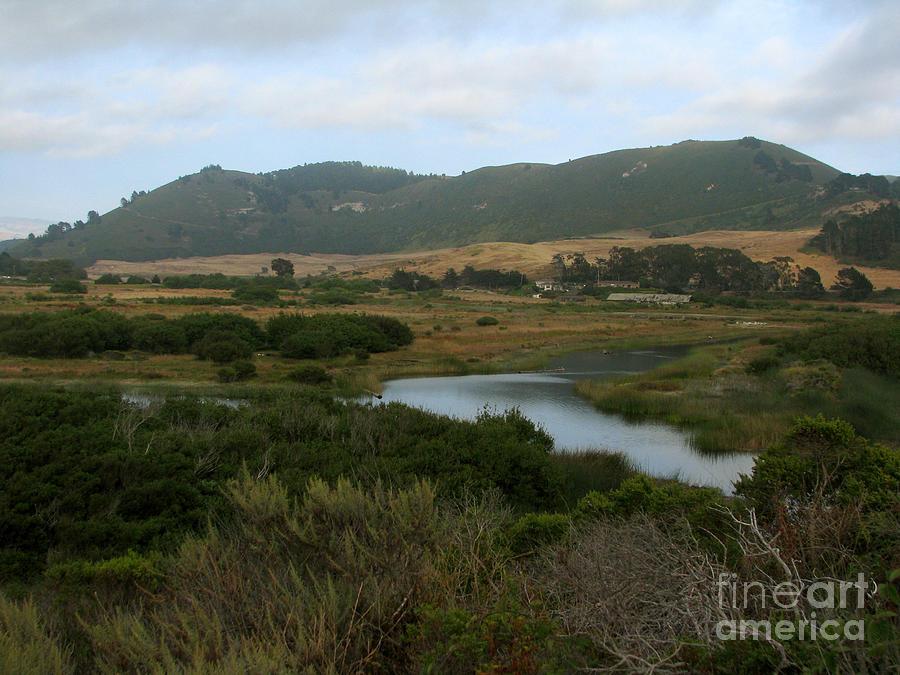 Restored Wetlands Photograph