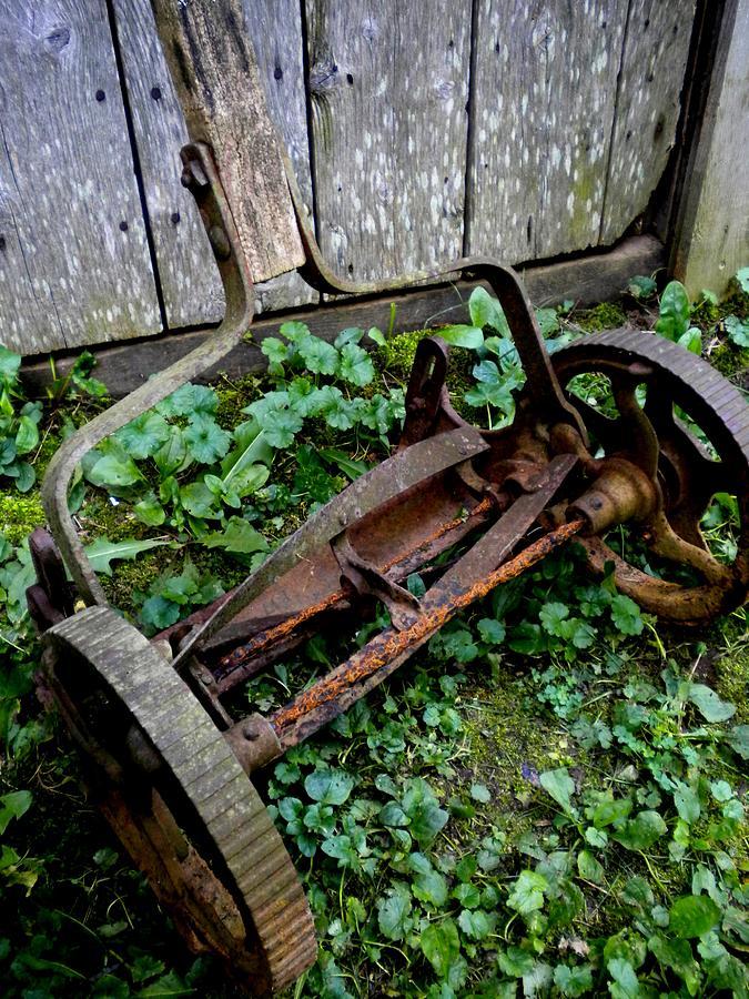 Lawnmower Photograph - Retired by Renate Nadi Wesley