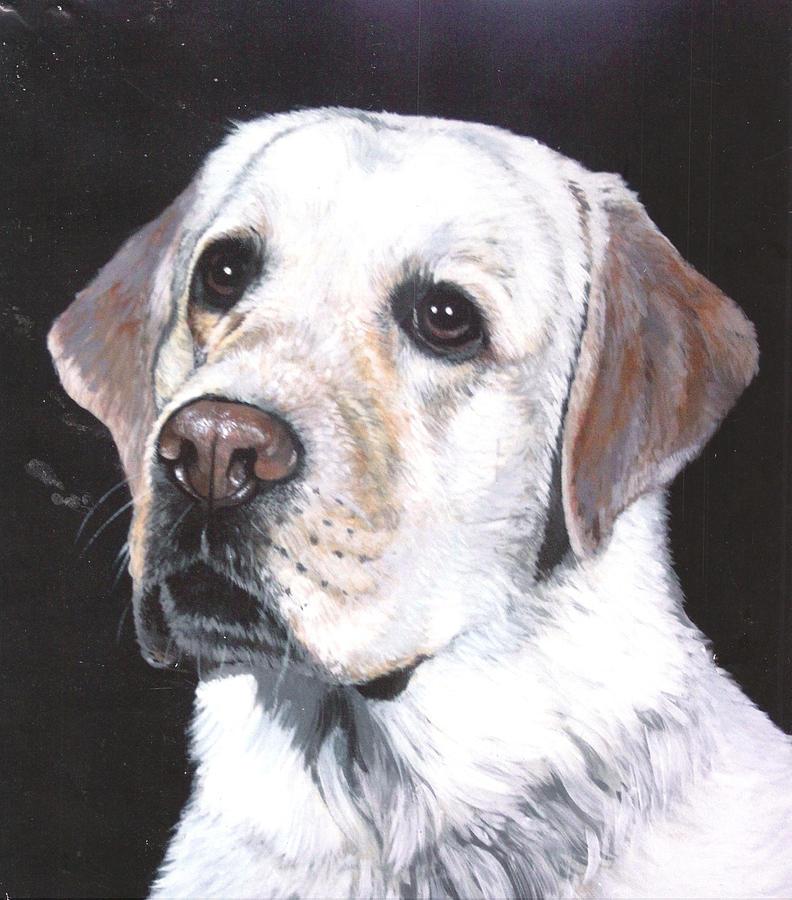 Pet Portrait Painting - Retriever by Steve Greco