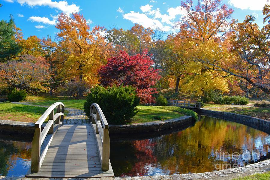 Return to Autumn by Tammie Miller