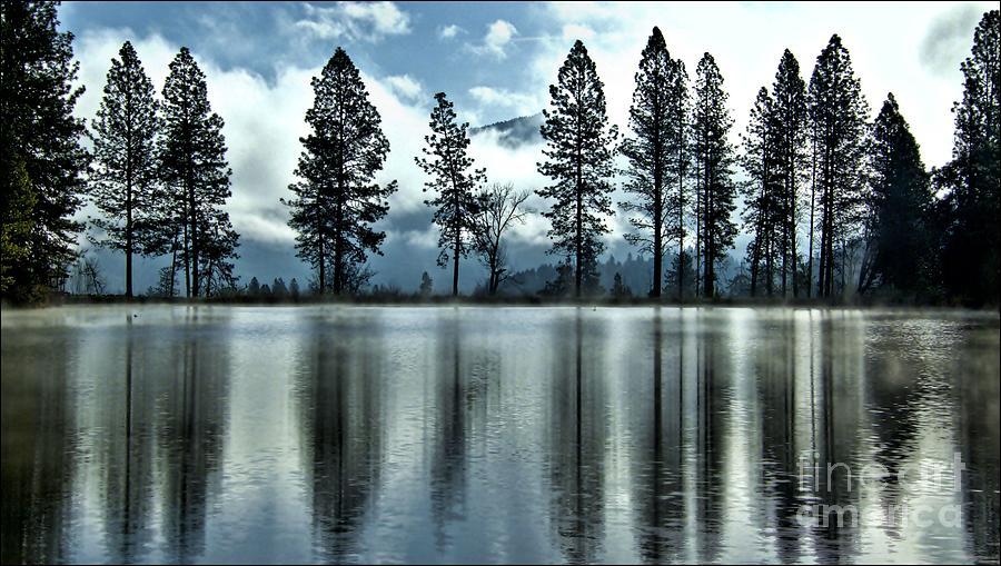 Return To Heron Pond by Julia Hassett