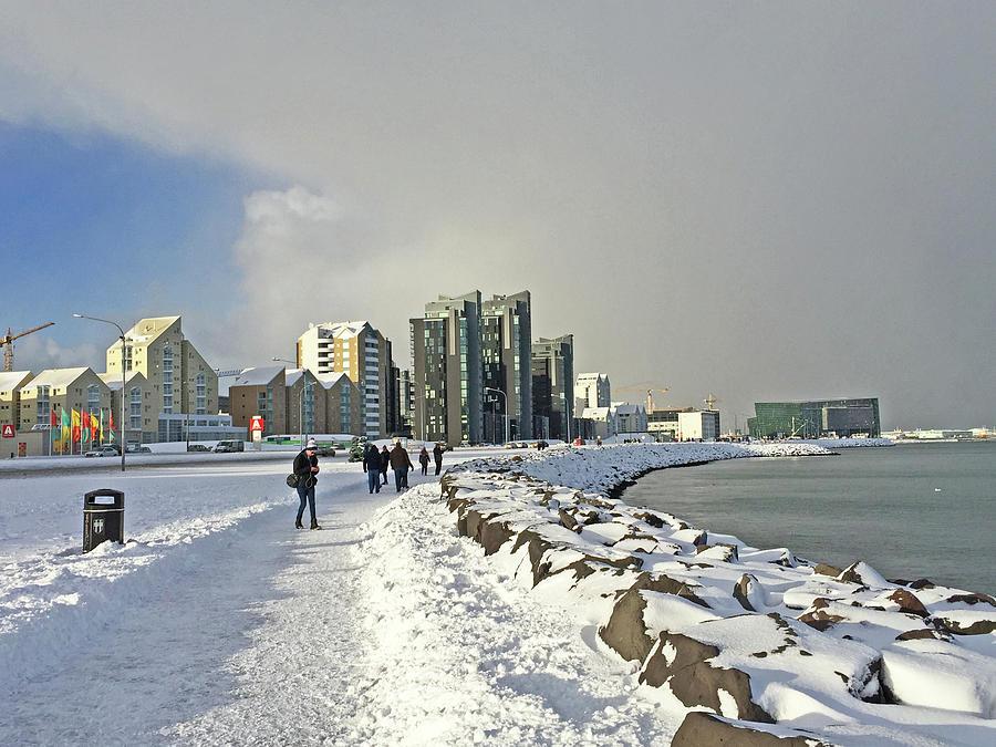 Reykjavik  Walk Way Along The Bay Iceland 2 3122018 _j2340.jpg Photograph by David Frederick