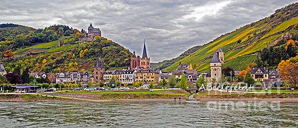 Germany Photograph - Rhine In Fall by April Bielefeldt
