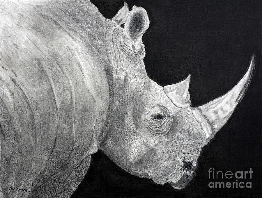 Rhino by Carol Morris