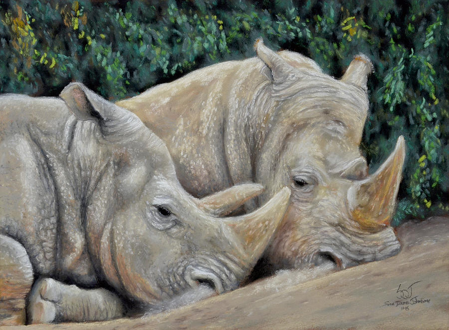 Rhinos by Sam Davis Johnson