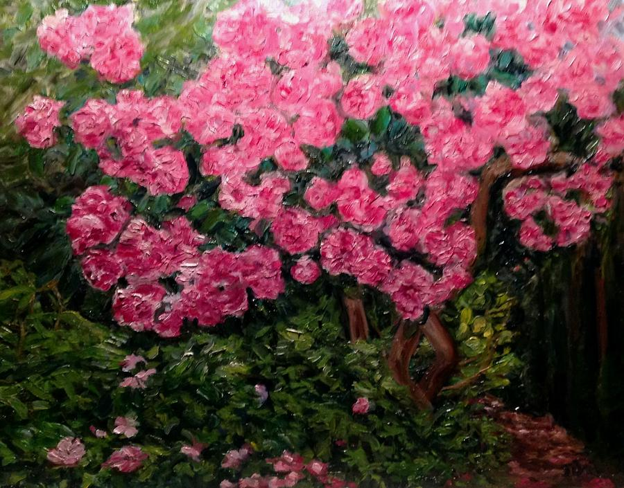 Rhododendron at Everett Arboretum by J Reynolds Dail