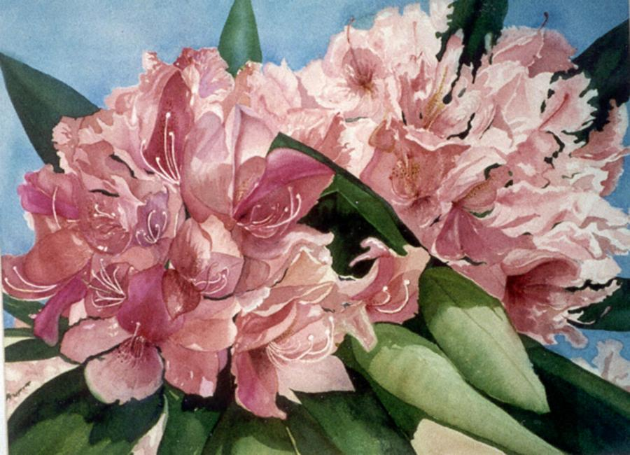 Flowers Painting - Rhodies From Moore State Park Paxton Ma by Rebecca Marona