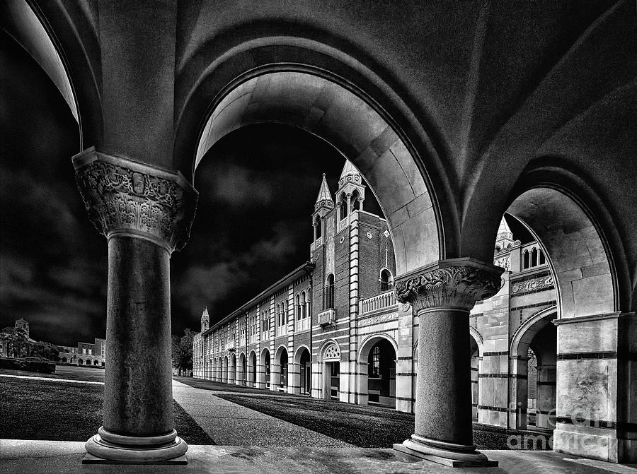 Downtown Houston Photograph - Rice Arches by Norman Gabitzsch